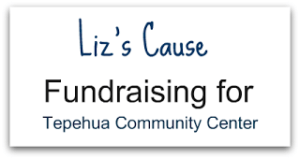 Liz's  Cause-Tepehua Community Center would love your help
