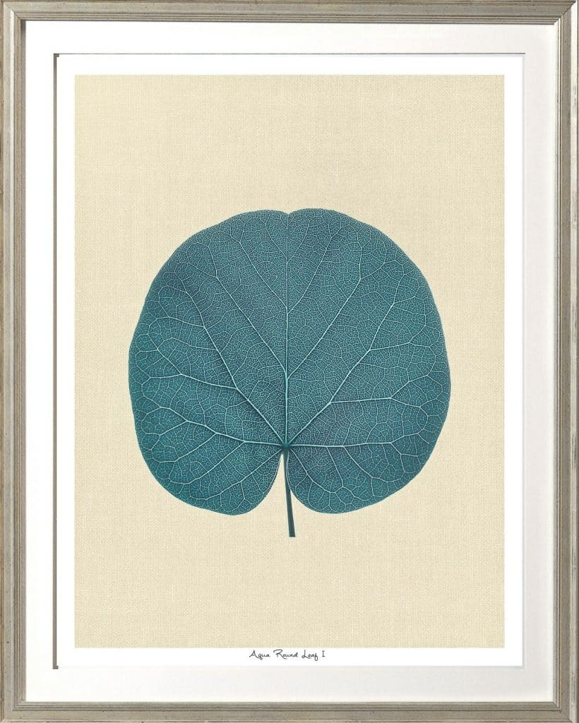 Aqua Round Leaf
